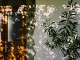 anneke-dunkhase-fotografie_005
